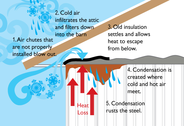 Air Chutes that are not properly installed blow out. Cold air infiltrates the attic and filters down into the barn. Old insulation settles and allows heat to escape from below. Condensation is created where cold and hot air meet. Condensation rusts the steel.